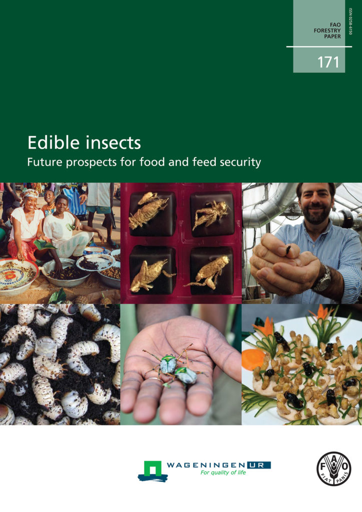 FAO報告書 Edible insects: Future prospects for food and feed security